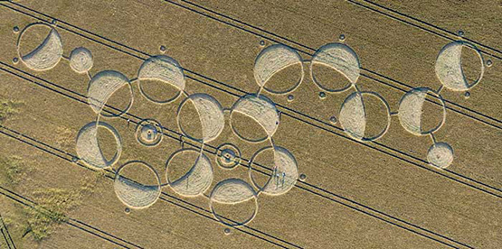 Name:  melatonin crop circle.jpg